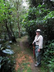 Kakamega Rain Forest (Rondo Retreat)